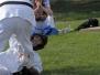 G.Geddes 08 SummerFest pics